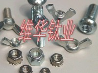 TA2GR2钛螺丝